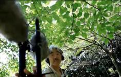 小倉正巳 Masami OGURA