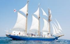 帆船 ヨット