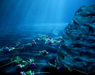 水中美術設置
